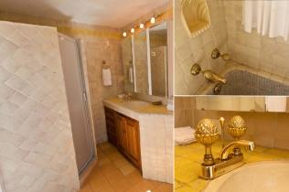 Master bedroom suite, first en-suite bathroom, vanity and shower, tub and sink brass fixtures.